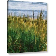 ArtWall Kevin Calkins Dune Grass in the Sunshine Gallery-Wrapped Canvas, Size: 36 x 48, Blue