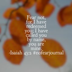 Jesus conquered death itself with his perfect love; even your worst fear is no match for his love! #nofear #nofearjournal #biblereading #biblereadingplan