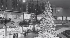 The indoor mall became a ubiquitous symbol of American suburbia in the 20th century. But America's first shopping mall, still landing in Edina, Minnesota, was designed, like every enclosed mall modeled after it, to bring some urbanity to suburbia. NewHour Weekend's Tracy Wholf reports. Continue reading →