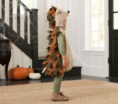 Hedgehog Costume | Pottery Barn Kids. @Jennifer Milsaps L Page, we need to make this for next year!