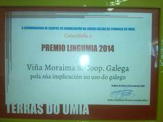 Lembrando o Premio Lingumia 2014 pola nosa implicación no uso do galego