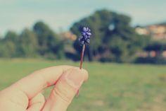 Allí donde las ves, las flores crecen del revés.