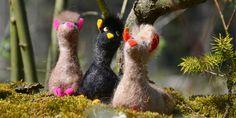 Etwas frech schaun sie drein, die drei jungen Alpakas. Hangefilzt in verschieden Farben auf sitzen sie auf einem Baumstamm.