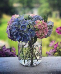 Ønsker alle en vakker søndag 🌸💙 Nå 30% på våre Norgesglass krukker i nettbutikken. Perfekte å pynte med til konfirmasjon, dåp og 17. Mai… Glass Vase, Flowers, Instagram, Home Decor, Decoration Home, Room Decor, Royal Icing Flowers, Home Interior Design, Flower