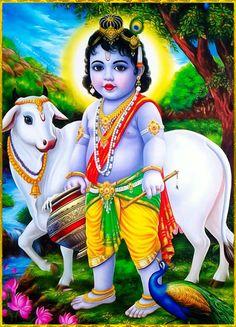 Krishna Leela, Krishna Hindu, Radha Krishna Images, Lord Krishna Images, Krishna Pictures, Shiva, Little Krishna, Baby Krishna, Cute Krishna