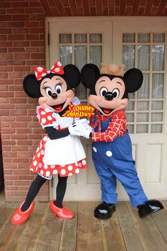 Mickey and Minnie Disney Fan, Disney Dream, Disney Mickey Mouse, Disney Parks, Mickey And Minnie Love, Mickey And Friends, Mickey Minnie Mouse, Disney Characters Costumes, Disney World Characters