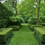 Formal Graden Path with Arborvitae and Boxwood - traditional - landscape - detroit - by Land Architects, Inc.
