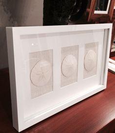 SAND DOLLAR ART 3 Framed in White Shadow Box by handpickedbysusan