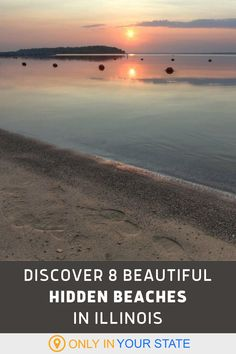 Looking to spend or end your summer at a beautiful beach? Find 8 gorgeous options in Illinois on this list. You'll discover free beaches, Great Lakes beaches, and turquoise waters with sandy shores! | Things To Do | Day Trip Ideas | Travel With Family And Friends | Outdoors | Summer Bucket List | Best State Parks Lake Beach, City Beach, Summer Bucket, Summer Travel, Chicago Beach, Lake Michigan Beaches, Hidden Beach, Family Vacations, Bird Art