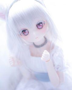 Kawaii anime doll from Instagram #DDH #DD #kawaii #cute #MDD #doll #dollstagram #ddh01 Kawaii Doll, Kawaii Cute, Kawaii Anime Girl, Anime Art Girl, Pretty Dolls, Beautiful Dolls, Anime Toys, Dream Doll, Little Doll