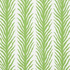 Schumacher X Celerie Kemble Creeping Fern Wallpaper in Moss Fern Wallpaper, Striped Wallpaper, Wallpaper Samples, Fabric Wallpaper, Wallpaper Roll, Coastal Wallpaper, Kitchen Wallpaper, Celerie Kemble, Fern Frond