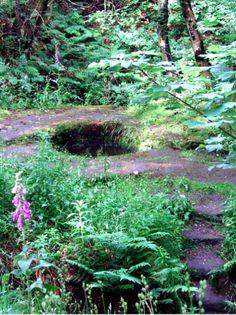 Druid's Well, Fife, Scotland