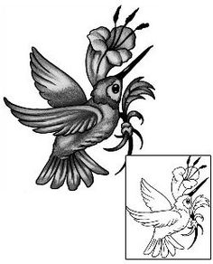 Show details for Hummingbird Tattoo ANF-02081