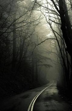Dark road forest ❤ hd desktop wallpaper for ultra hd tv Gothic Aesthetic, Arte Obscura, Dark Paradise, Most Haunted, Sombre, Dark Forest, Road Trip Usa, Dark Art, Beautiful Landscapes