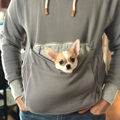 Ladies, if hubby ain't too chubby put a Roodie over that booty. :) All jokes aside though, as you can see our new Gray looks great on men too! Thanks Tiny Haven Chihuahuas (photo credit). All Jokes, Stylish Hoodies, Pet Carriers, Small Dogs, Your Pet, Looks Great, Cute Animals, Pouch, Chihuahuas