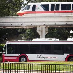 Your Transportation Primer For Walt Disney World Resorts
