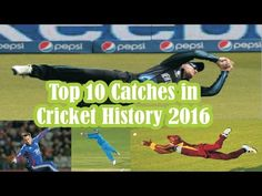 Best Flying Cricket Catches 2016