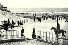 Oude foto's van Zandvoort Strand, Vintage Photos, Horses, Animals, The Sea, Historical Photos, Nostalgia, Animales, Animaux