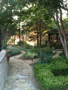 SFC LANDSCAPE AND OUTDOOR KITCHEN