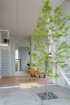 House in Ohno by Airhouse Design Office