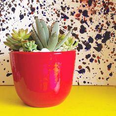 Cerâmica colorida: a partir de R$60  #oitominhocas #suculentas #suculovers #decoração #ceramica #elo7br
