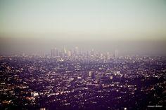 Foggy, foggy L.A.