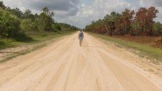 Everglades Nationalpark, Florida. Tipps für die besten Touren, zur Anreise & für Unterkünfte. Wann ist die beste Reisezeit für die Everglades? Weiterlesen