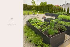 Jak Zrobić Ogród Warzywny Fire Pit Patio, Diy And Crafts, Pergola, House, Plants, Gardens, Blog, Bricolage, Salads
