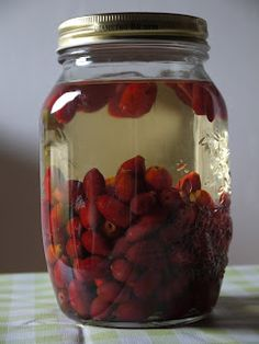 WILDCRAFT VITA - homemade Rosehip tipple (liqueur) Clean the rose hips and cut off tops and tails. Leave them to dry in a dark place  for a few days - on kitchen paper. Use a clean glass jar with tight-fitting lid. Fill 2/3 of the jar with  rosehips. Cover well with  vodka - 40% alcohol content. Leave to infuse for one month in a dark place  Shake every few days. After one month, strain and filter  into a clean glass bottle/s with stoppers. Store for at least  2 months in a dark place