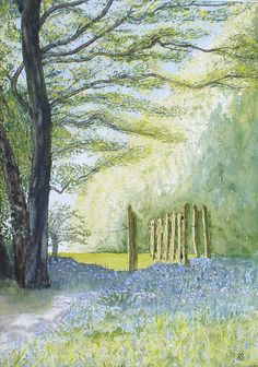 Bluebell wood by Burgit, via Flickr