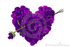 Purple Rose Petal Heart with arrow - I think these look like violet petals, but what do I know? Purple Love, All Things Purple, Shades Of Purple, Deep Purple, Purple Flowers, Pink Purple, Purple Stuff, Purple Hearts, Hearts And Roses