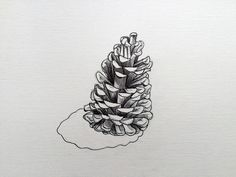 Pinecone Sketch Pencil and Biro