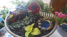 Fairy Gardens for Garden Week