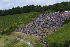 Rally Germany 2014 Rally, Victorious, Volkswagen, Dolores Park, Germany, Travel, Viajes, Traveling, Deutsch