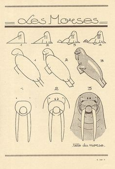 les animaux 78 by pilllpat (agence eureka), via Flickr