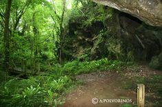 Comunidad El Pais » ECOTURISMO » Cuevas de Andina, las cuevas escondidas