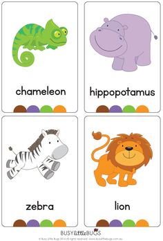 Brand new set of at the Zoo flash cards!  All brightly coloured and of high quality.  There are 24 brightly coloured, high quality printable flash cards in this pac