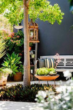 jardin cour soleil