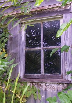 I want a little cottage in the woods with purple windows like this Old Windows, Windows And Doors, Gothic Windows, Lavender Cottage, Purple Home, Window View, Window Dressings, Through The Window, Old Doors