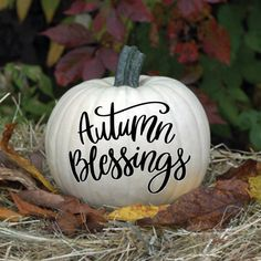 Items similar to Thankful and blessed - Thanksgiving Decal - Thanksgiving Decor - Fall Decor - Fall Decals on Etsy Thanksgiving Decorations, Seasonal Decor, Halloween Decorations, Holiday Decor, Fall Decorations, Holiday Ideas, Autumn Ideas, Thanksgiving Crafts, Happy Thanksgiving