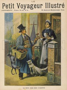The Cat's Meat Man goes from house to house in a London street, and a very popular visitor he is - with the cats, at any rate. Date 1899.