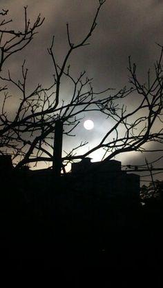 Magnífico sol da manhã na janela lateral do quarto de dormir..  :-) @AllRightsofGod @SoleLua www.hersander.com