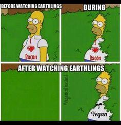 After watching Earthlings vegan meme                                                                                                                                                                                 More