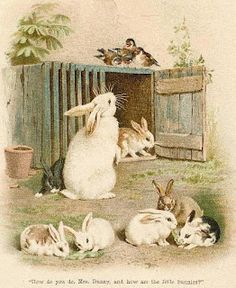 Darling Victorian Rabbits and Bunnies From Children's Books and Antique Postcards