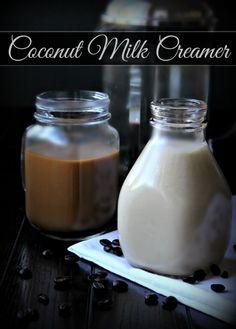 Homemade Coconut Milk Creamer – The Coconut Mama