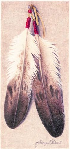 bald eagle feather coloring on the tattoo? Bald Eagle Feather, Indian Feather Tattoos, Eagle Feathers, Indian Feathers, Feather Drawing, Feather Tattoo Design, Feather Art, American Indian Art, Native American Indians