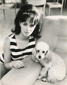 Jackie's dog, Candy