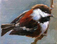 Shauna Finn 'Chestnut-backed Chickadee'