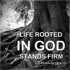 Life rooted in GOD stands firm. Proverbs - Be rooted in Christ Bible Scriptures, Bible Quotes, Biblical Quotes, Religious Quotes, Qoutes, Scripture Cards, Bible Prayers, Bible Art, Faith Quotes