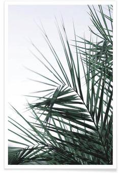 Foliage as Premium Poster by clintonfriedman   JUNIQE